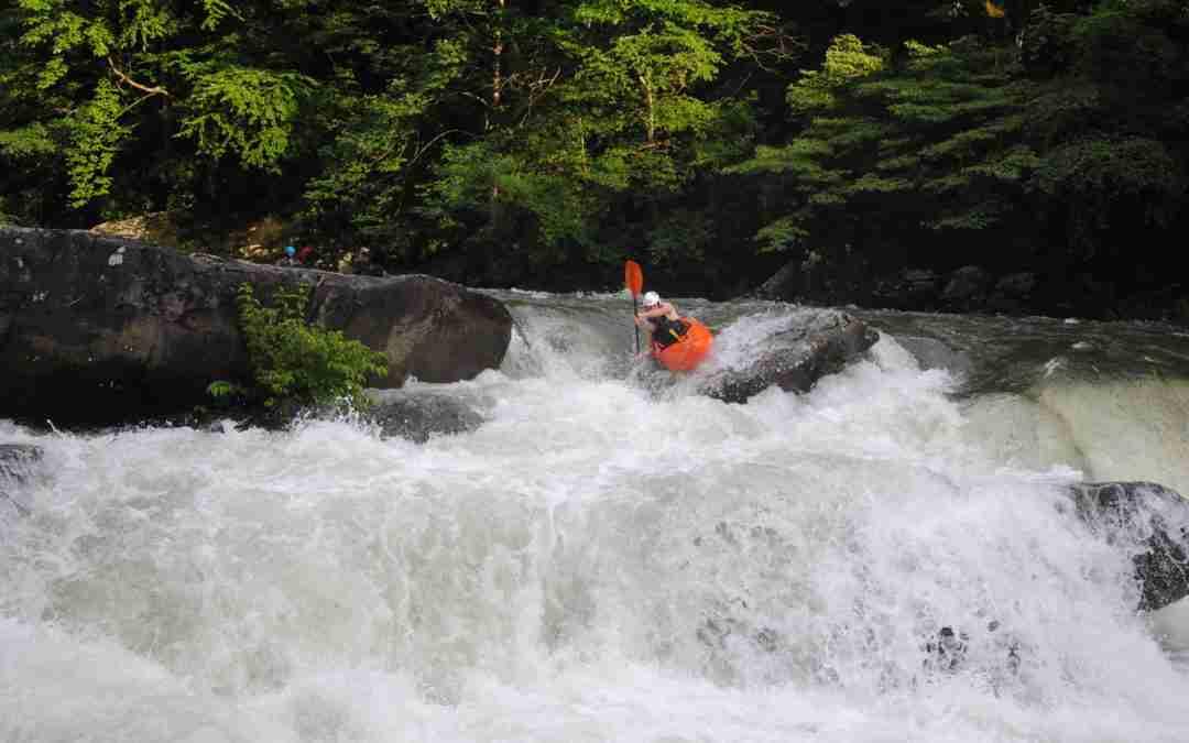 Vikings donate $2,400 to protect rivers